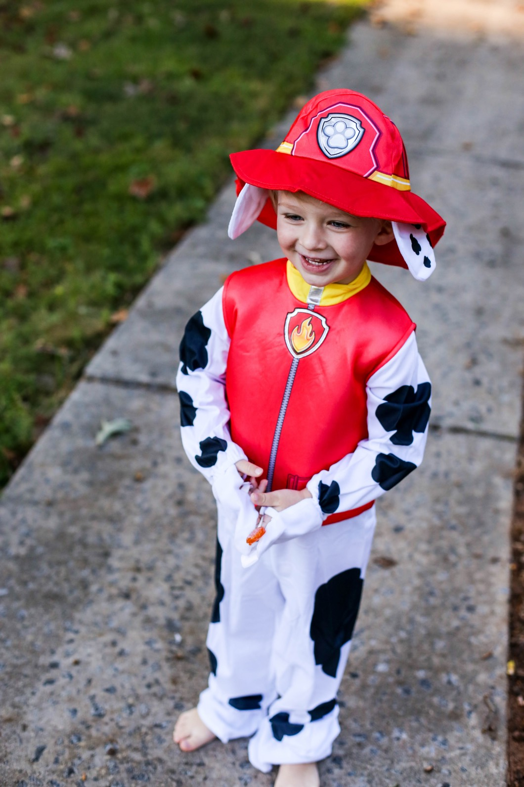 Party City Paw Patrol Cute Toddler Costume