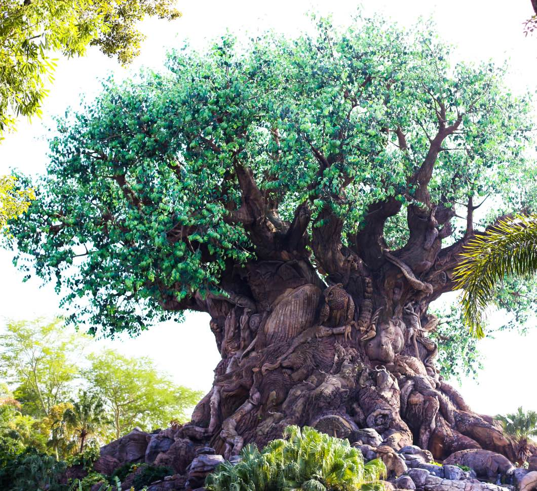 Tree of Life Animal Kingdom - Holiday Attractions in Orlando by Atlanta travel blogger Happily Hughes